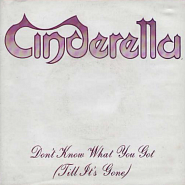 Cinderella - Don't Know What You Got (Till It's Gone) notas para el fortepiano