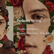 Shawn Mendes - Perfectly Wrong notas para el fortepiano